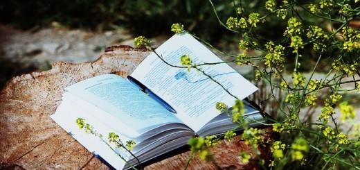 ilmu, buku, sinau, pesantren quran, pesantren lansia